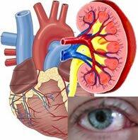 Осложнения сахарного диабета: как высокий сахар влияет на почки, сердце и сосуды, глаза, нервы, ноги